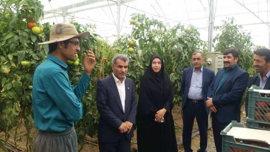 اصفهان| دهاقان| افتتاح 2 طرح اشتغال مددجویی بهزیستی شهرستان دهاقان