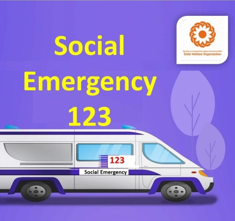 An introduction on Social Emergency Services(123)