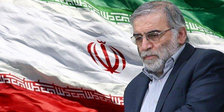 پیام مدیرکل بهزیستی استان تهران به مناسبت شهادت دکتر محسن فخری زاده