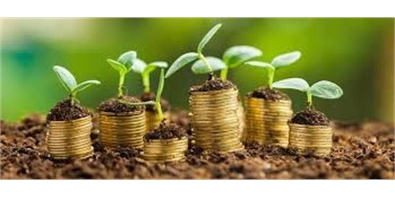 برنامه تأمین مالی خرد با رویکرد بانکداری پیوندی