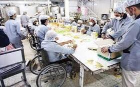 پرداخت یارانه ارتقای کارآیی معلولین شاغل در بخش غیردولتی به کارفرمایان