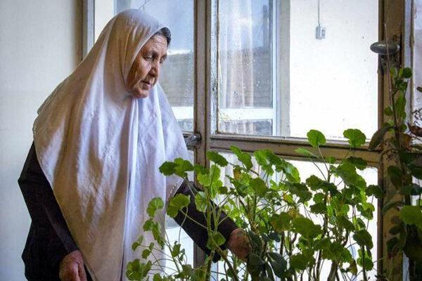 بهزیستی در رسانه | بهرهمندی یک هزار معلول و سالمند استان سمنان از خدمات بهزیستی