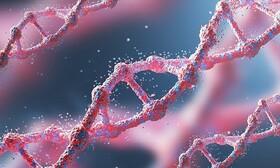 غربالگری ژنتیک اجباری نیست/ بیماریهای ژنتیکی، بدون درمان اما قابل پیشگیری