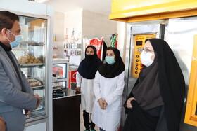 توانمندسازی ۲۲۳ زن  سرپرست خانوار
