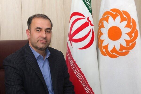 همزمان با ایام مبارک دهه فجر 100 طرح و پروژه در بهزیستی استان زنجان افتتاح خواهد شد