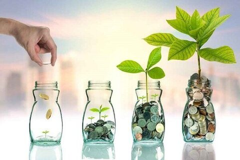 تشکیل ۳۵ صندوق مالی خرد در بین مددجویان بهزیستی خراسان رضوی