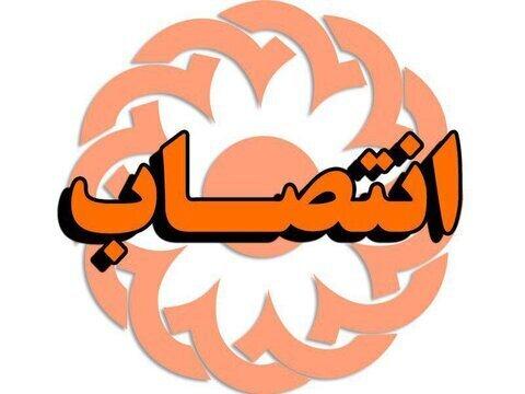 دکتر حسن نژاد سرپرست بهزیستی استان هرمزگان شد