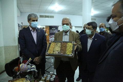 بازدید دکتر ربیعی سخنگوی دولت و دکتر قبادی دانا از مرکز اشتغال سرای حافظ
