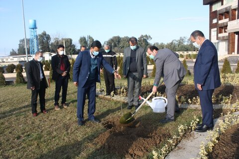 آیین گرامیداشت روز درختکاری برگزار شد