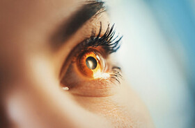 سیستم بیونیکی که بینایی را به نابینایان بازمیگرداند