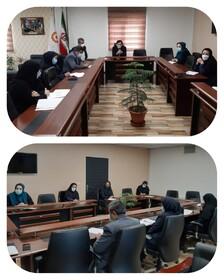 شورای پژوهش بهزیستی استان البرز تشکیل جلسه داد