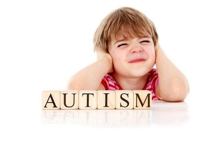 مدیرکل بهزیستی استان کرمان گفت: حدود ۳۰۰ نفر دارای اختلال اوتیسم در استان کرمان شناسائی شده است.