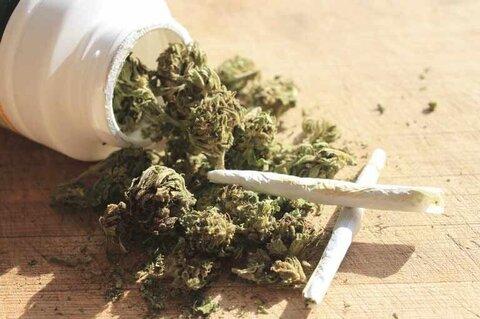 ماده مخدر «گل»، صدرنشین تماسهای خط ملی اعتیاد