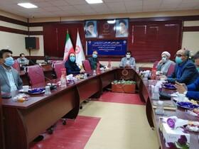 گزارش تصویری  افتتاح دبیرخانه ملی رصد آسیبهای اجتماعی در خراسان جنوبی همزمان با 30 استان دیگر