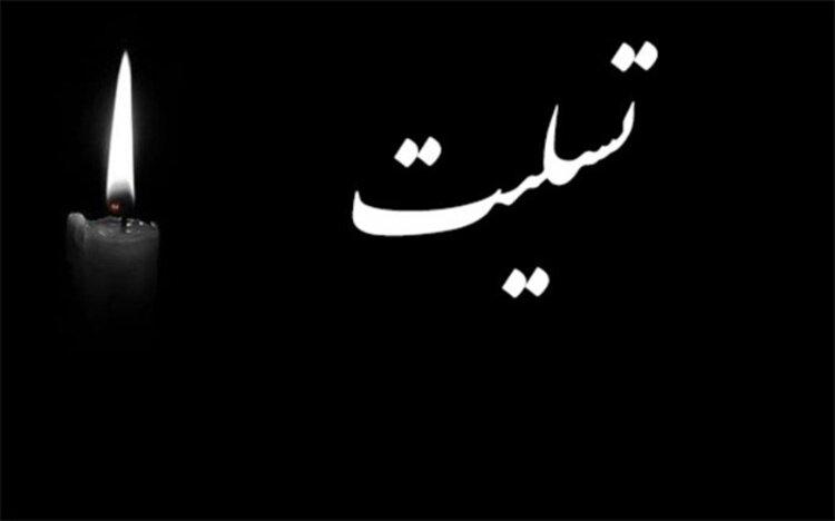 پیام تسلیت رئیس سازمان بهزیستی کشور در پی در گذشت همکار خراسان رضوی