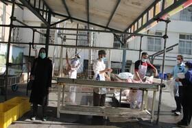 شهر تهران| گزارش تصویری| بازدید معاون مشارکت های مردمی از روند جمع آوری نذورات عید قربان