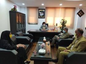 بهزیستی به عنوان دبیر شورای مشورتی بانوان استان اشتغال و توانمندسازی زنان بی سرپرست و بدسرپرست را پیگیری می کند