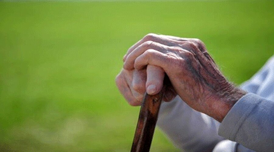 """Teaching a digital skill to the elderly /campaign """"I Can; """"It's never too late to learn"""