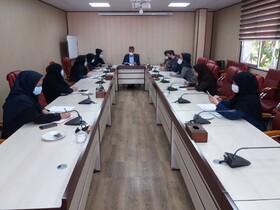 دومین کمیته اشتغال و کارآفرینی بهزیستی استان البرز برگزار شد