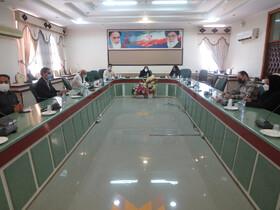 نشست مشورتی مناسب سازی شهرستان بوشهر برگزار شد