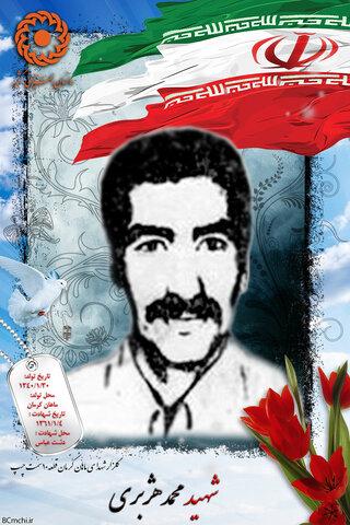 شهید محمد هژبری