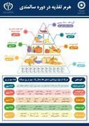 اینفوگرافیک |هرم تغذیه در دوره سالمندی