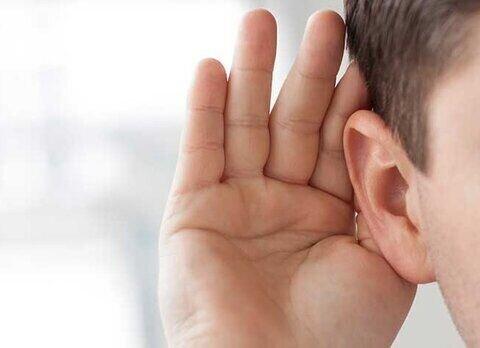۲۳ درصد معلولان خراسان جنوبی ناشنوا هستند