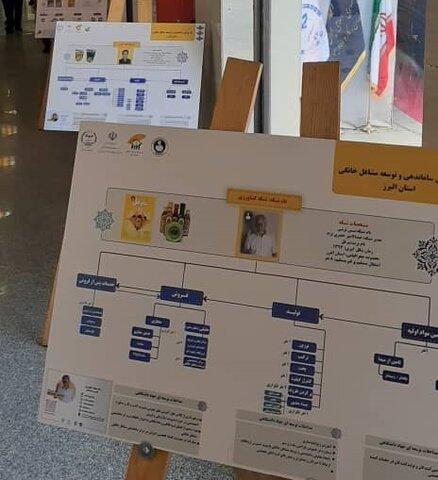 افتتاح طرح ملی مرکز ساماندهی مشاغل خانگی در البرز