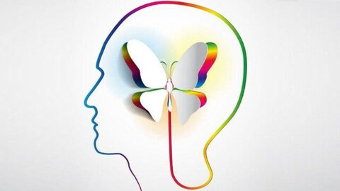 مداخلات کارآمد روانشناختی نقش موثری در ارتقاء سلامت روان دارد